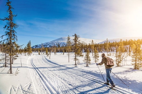 Panoramic view of male person cross-country skiing in beautiful nordic winter landscape in Scandinavia with blue sky and golden evening light at sunset, Europe; Shutterstock ID 236012335; Your name (First / Last): Jessica Cole; GL account no.: 56530; Netsuite department name: Global Publishing-WIP; Full Product or Project name including edition: Best in Travel 2017 1