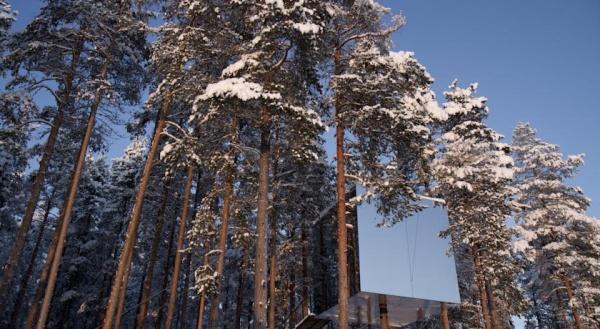 treehotel8
